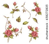 decorative hand drawn roses ... | Shutterstock .eps vector #658272835