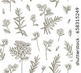vector hand drawn floral... | Shutterstock .eps vector #658315249