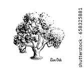 Vector Sketch Illustration Of...