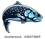 realistic drawing of the...   Shutterstock .eps vector #658373869