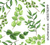 herbal seamless pattern of... | Shutterstock . vector #658378399