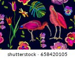 two ibises in the blooming... | Shutterstock .eps vector #658420105