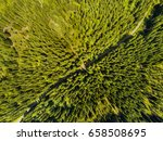 aerial view of forest and... | Shutterstock . vector #658508695