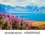 landscape view of lake tekapo ... | Shutterstock . vector #658509361