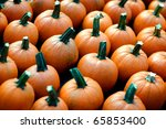 Small Pumpkins For Sale By A...