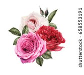 bouquet of roses  watercolor ... | Shutterstock . vector #658553191