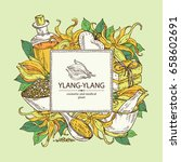 background with ylang ylang... | Shutterstock .eps vector #658602691