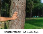 male hand places on the trunk... | Shutterstock . vector #658633561