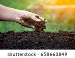 soil in hand for planting | Shutterstock . vector #658663849