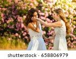 two brides women white dresr.... | Shutterstock . vector #658806979