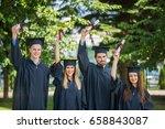group of diverse international... | Shutterstock . vector #658843087