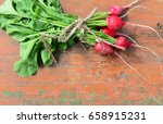 bundle of red radish with brown ... | Shutterstock . vector #658915231