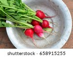 red radish with green leaves in ... | Shutterstock . vector #658915255