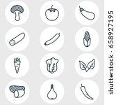 vector illustration of 12... | Shutterstock .eps vector #658927195