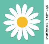 White Daisy Chamomile. Cute...