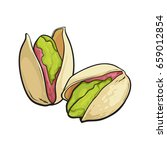 two pistachio nuts  hand drawn... | Shutterstock .eps vector #659012854