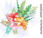 tropical flowers bouquet... | Shutterstock . vector #659018545