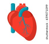 cardiology icon with human... | Shutterstock .eps vector #659071099