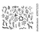 a set of hand drawn plants.... | Shutterstock .eps vector #659071315