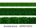 grass isolated on white... | Shutterstock . vector #659074351