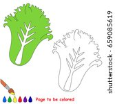 green lettuce to be colored ... | Shutterstock .eps vector #659085619