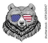Grizzly Bear Big Wild Bear Hand ...
