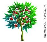 cartoon illustration of a tree... | Shutterstock .eps vector #659166871