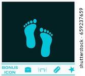 Footprint Icon Flat. Blue...