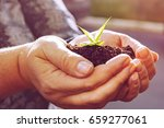 mature human hands are holding... | Shutterstock . vector #659277061