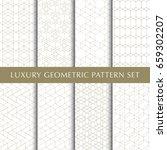 luxury geometric vector... | Shutterstock .eps vector #659302207