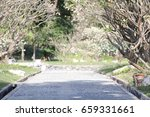 Streets And Paths In The Flowe...