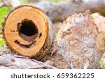 close up detail image of... | Shutterstock . vector #659362225