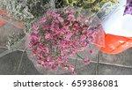 the flower | Shutterstock . vector #659386081