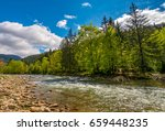 River flows among of a green forest at the foot of the mountain. Picturesque nature area in Carpathians. Serene springtime day under blue sky with some clouds - stock photo