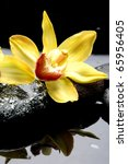 Macro Of Yellow Orchid And...