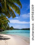 paradise tropical beach and... | Shutterstock . vector #659581009