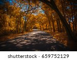 autumn in florida state. | Shutterstock . vector #659752129