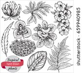 vector collection of hand drawn ... | Shutterstock .eps vector #659940985