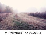 view of road on meadow | Shutterstock . vector #659965831