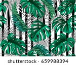 vector tropical palm leaves... | Shutterstock .eps vector #659988394