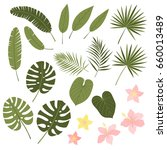 vector set of tropical leaves.... | Shutterstock .eps vector #660013489