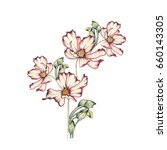 watercolor flower illustration | Shutterstock . vector #660143305