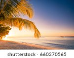 tropical paradise landscape in... | Shutterstock . vector #660270565