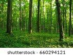 forest green | Shutterstock . vector #660294121