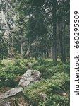 north scandinavian pine forest  ... | Shutterstock . vector #660295309
