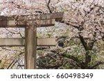 tori gate with sakura cherry... | Shutterstock . vector #660498349