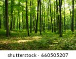 forest green | Shutterstock . vector #660505207