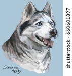 vector colored portrait of...   Shutterstock .eps vector #660601897
