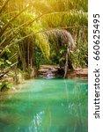 Natural Oasis Pool Creek In...