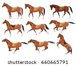 collection of vector... | Shutterstock .eps vector #660665791